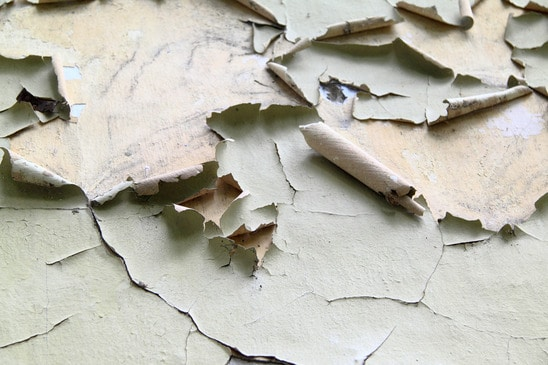 Paint Failure and the Exterior of Your Home