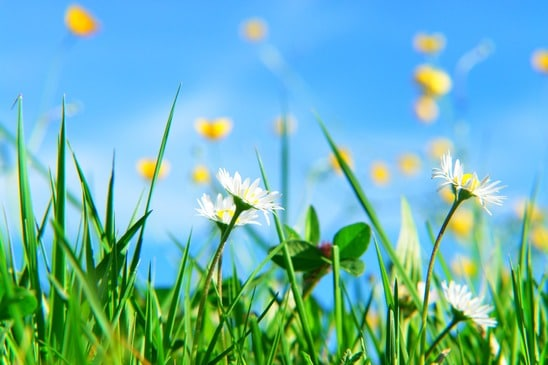 Spring Maintenance: Your Best Tip Is An Exterior Paint Job